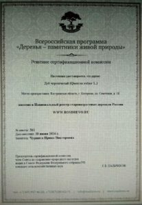 дуб сертификат