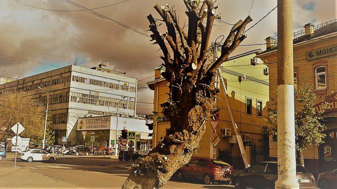 безжалостный урбанизм кострома