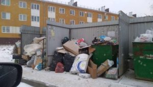 венеция мусор кострома