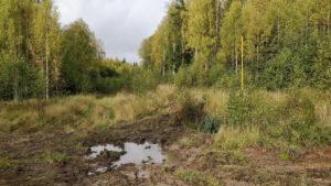 Газопровод из Галича в Парфеньево фото