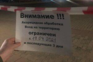 Объявление о клещах в Костроме